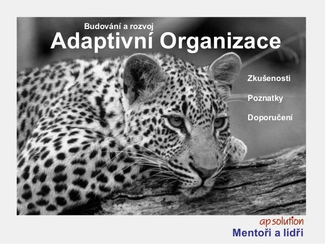1 Zkušenosti Poznatky Doporučení Budování a rozvoj Adaptivní Organizace Mentoři a lídři
