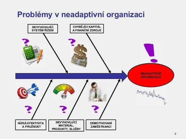Budování a rozvoj adaptivní organizace Slide 3