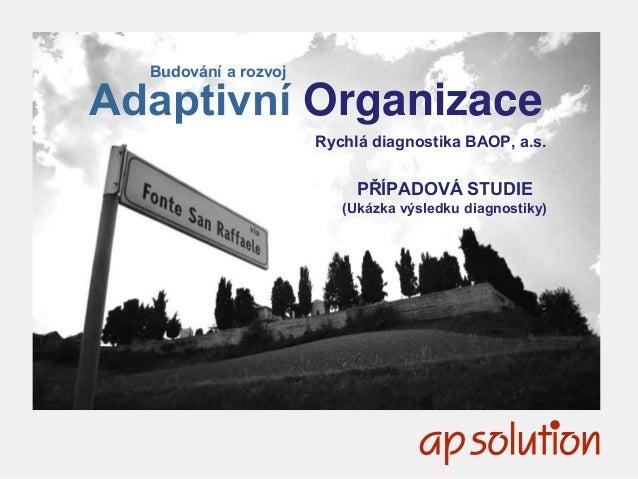 1 Budování a rozvoj Adaptivní Organizace Rychlá diagnostika BAOP, a.s. PŘÍPADOVÁ STUDIE (Ukázka výsledku diagnostiky)