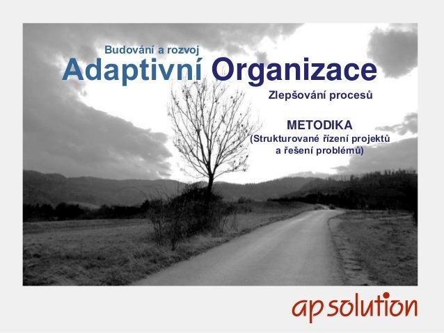 1 Budování a rozvoj Adaptivní Organizace Zlepšování procesů METODIKA (Strukturované řízení projektů a řešení problémů)