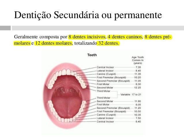 Well-known Apostila de radiologia odontológica HB15