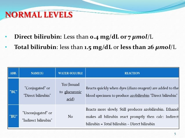 1.5 mg dl bilirubin in adults