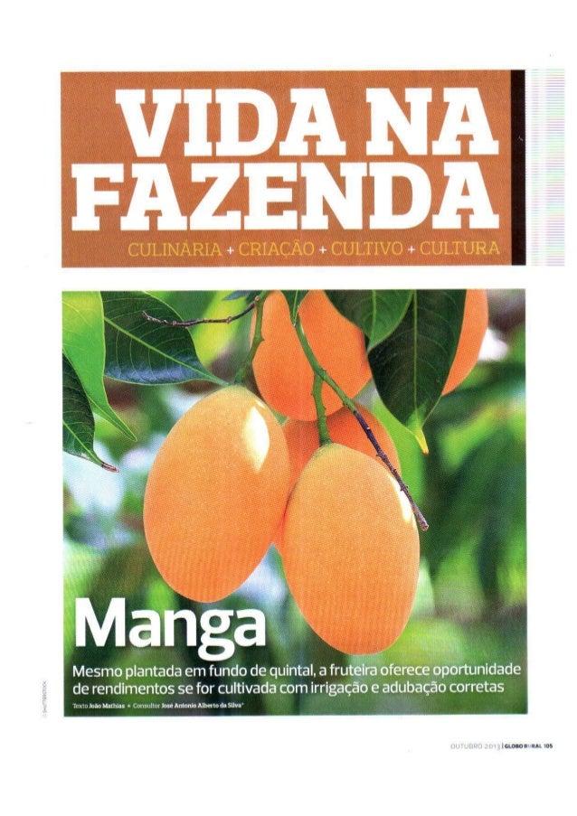 Como plantar - Revista Globo Rural