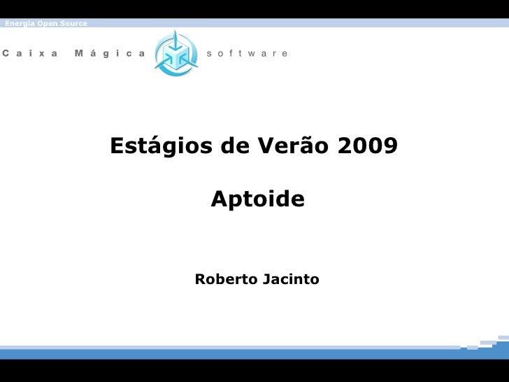 Estágios de Verão 2009  Aptoide Roberto Jacinto