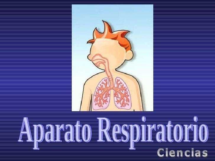 Aparato Respiratorio Ciencias