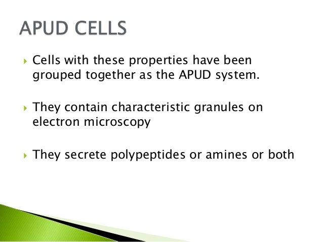 Apu domas & carcinoid syndrome Slide 3
