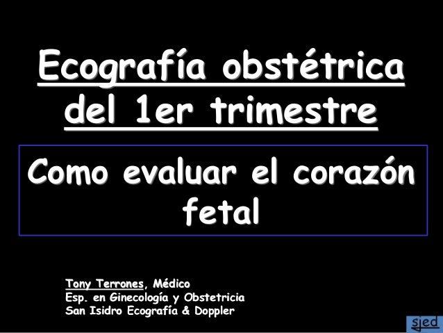 Ecografía obstétrica del 1er trimestre Como evaluar el corazón fetal Tony Terrones, Médico Esp. en Ginecología y Obstetric...