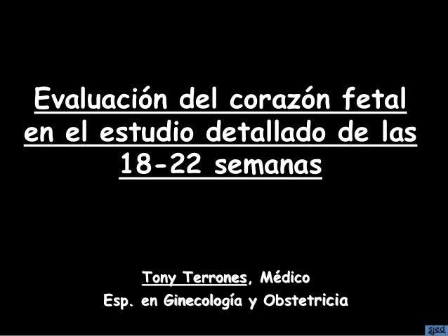 Evaluación del corazón fetal en el estudio detallado de las 18-22 semanas Tony Terrones, Médico Esp. en Ginecología y Obst...