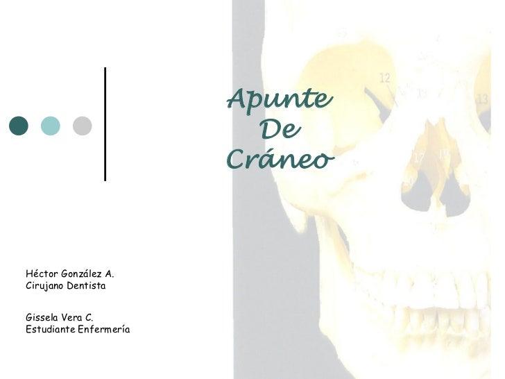 Apunte                           De                         Cráneo    Héctor González A. Cirujano Dentista   Gissela Vera ...