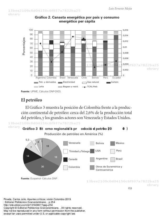 Pineda, Carlos Julio. Apuntes críticos: visión Colombia 2019.: Editorial Politécnico Grancolombiano, . p 254http://site.eb...
