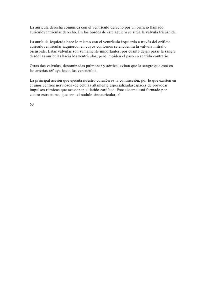 Lujo Agujeros 10a Edición Anatomía Y Fisiología Molde - Imágenes de ...