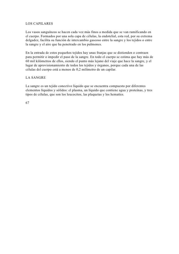 Increíble Anatomía Y Fisiología Del Tejido Epitelial De La Hoja De ...