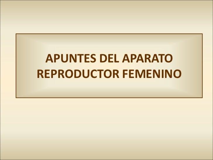 APUNTES DEL APARATOREPRODUCTOR FEMENINO