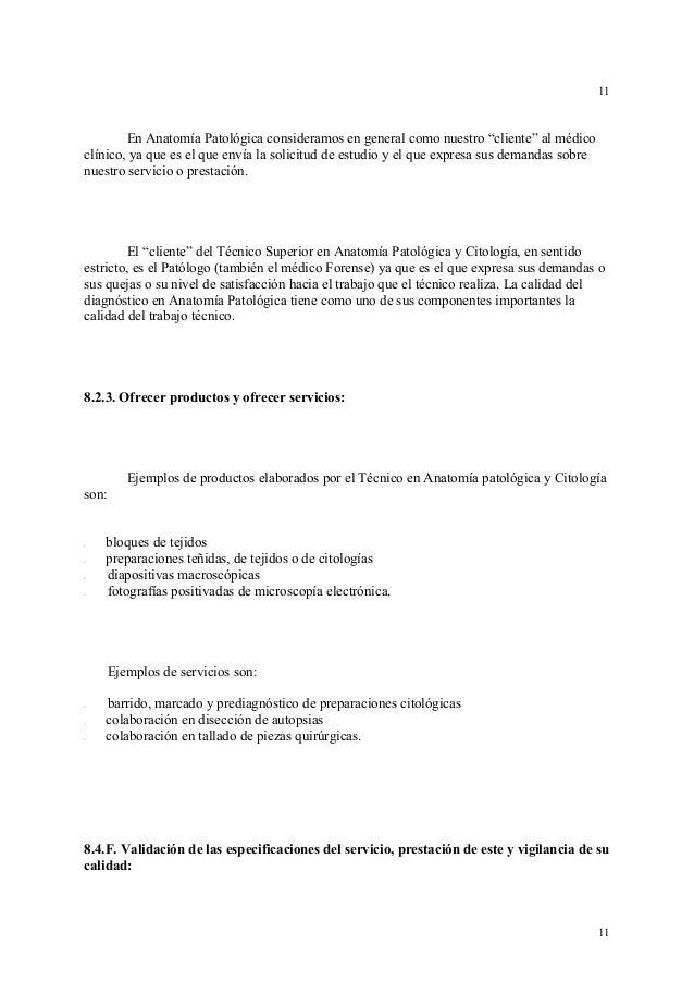 Bonito Preguntas De La Práctica De Anatomía Macroscópica Festooning ...