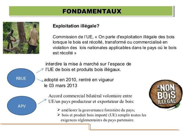 Exploitation illégale? Commission de l'UE, « On parle d'exploitation illégale des bois lorsque le bois est récolté, transf...