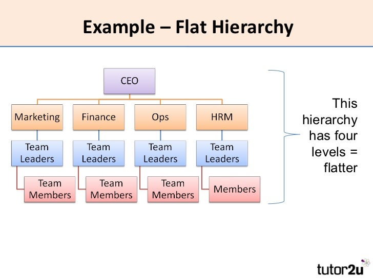 flat organizational structure example business plan