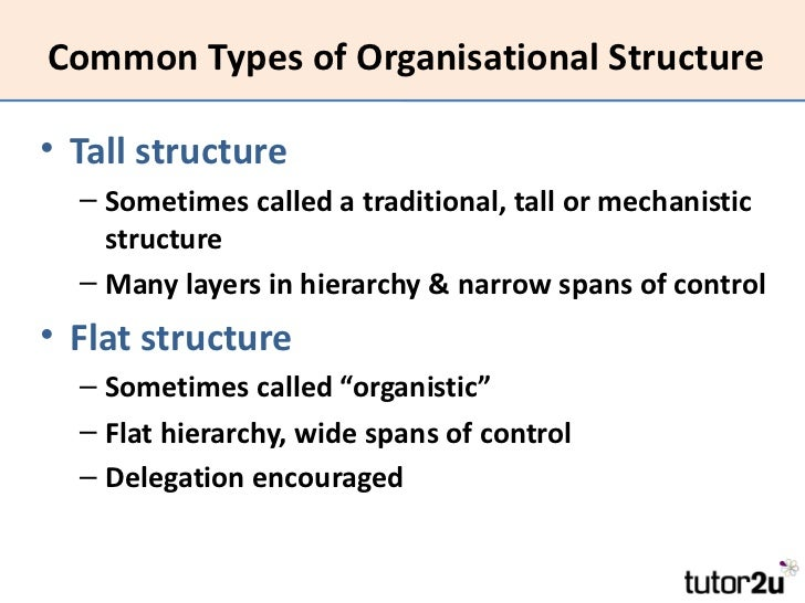 disadvantages of mechanistic structure