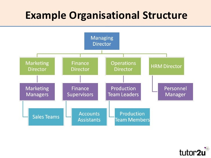 plan to improve organizational sturcture and Understand the types of organization design and organization design aligning organizational we include this and other tools such as tree plan and.