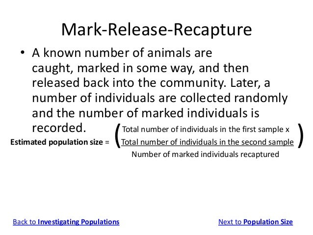 mark release recapture method In the first method, a number of individuals is counted and students extrapolate to  make an estimate the second method is called mark, release, recapture.