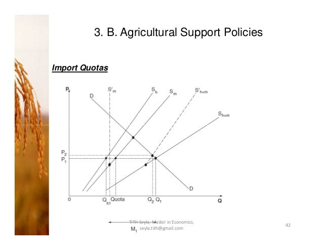 What is the purpose of import quotas