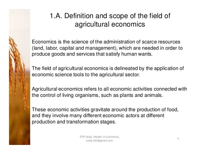 Agricultural economics masters thesis