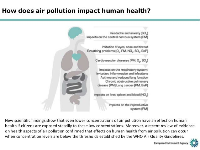 who air quality report