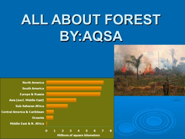 ALL ABOUT FORESTALL ABOUT FORESTBY:AQSABY:AQSA