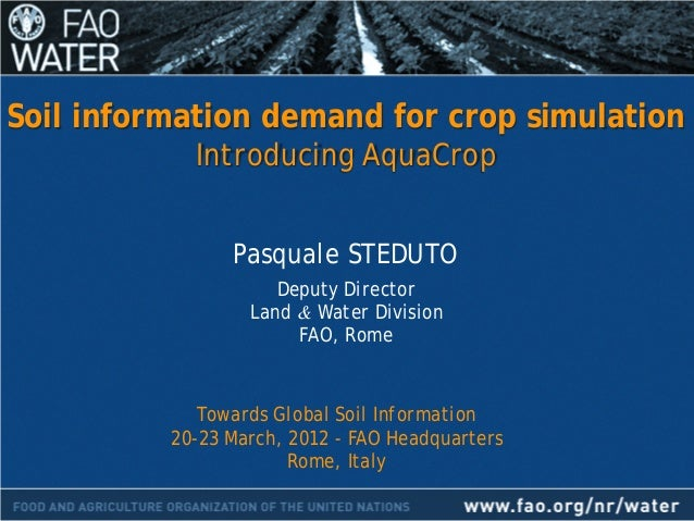 Soil information demand for crop simulation introducing for Soil details