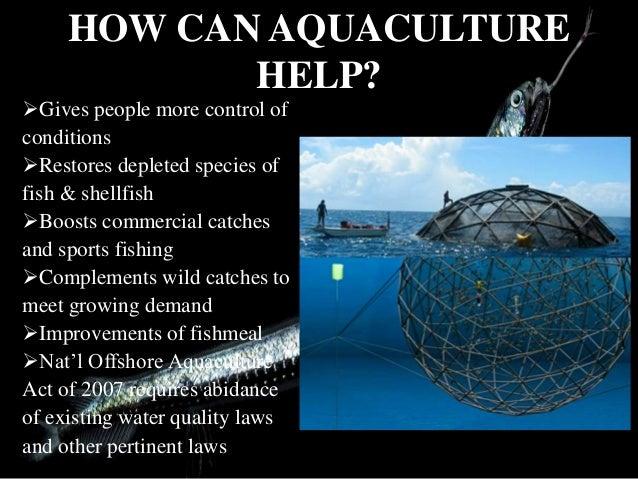 The secrets to economic success in aquaculture