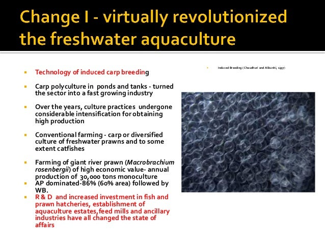 Aquaculture and environment: Sustainability issues_Dr