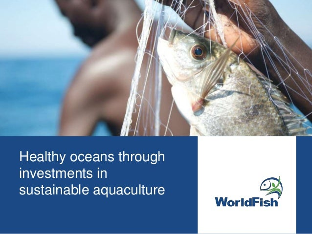Healthy oceans through investments in sustainable aquaculture