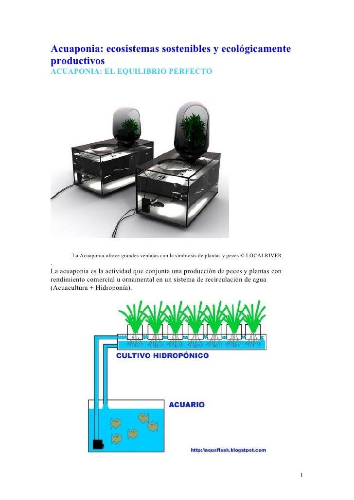 Acuaponia: ecosistemas sostenibles y ecológicamente productivos ACUAPONIA: EL EQUILIBRIO PERFECTO                         ...
