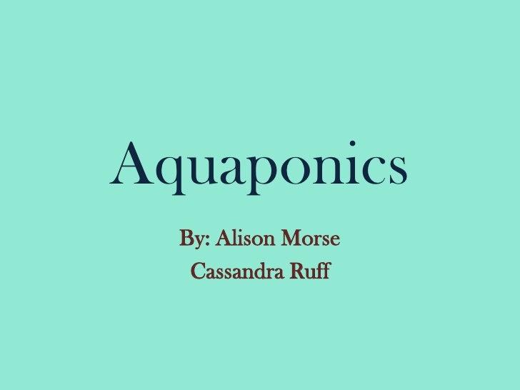Aquaponics<br />By: Alison Morse<br />Cassandra Ruff<br />