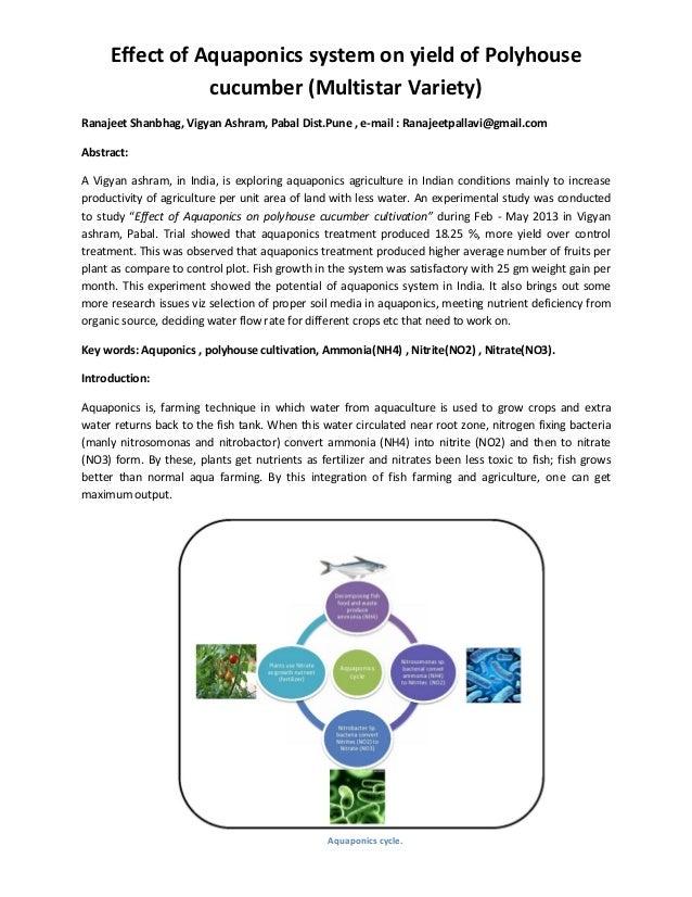 Effect of Aquaponics system on yield of Polyhouse cucumber (Multistar Variety) Ranajeet Shanbhag, Vigyan Ashram, Pabal Dis...
