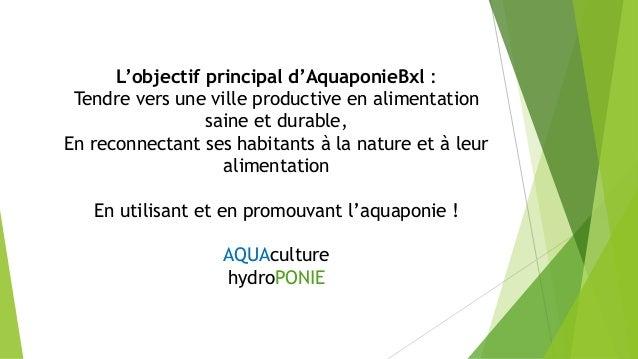 Aquaponie bxl Slide 3