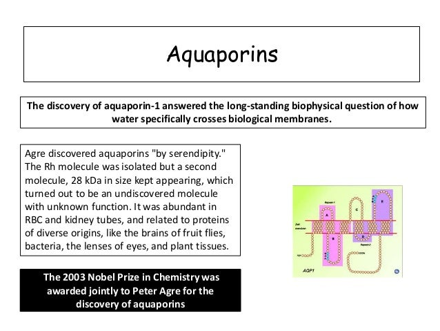 aquaporins function and discovery Introduction to aquaporin structure in this unit you will use the conventional molecular graphics tools of vmd to become familiar with the key structural features of aquaporins, and how.