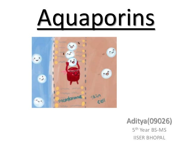 Aquaporins  Aditya(09026) 5th Year BS-MS IISER BHOPAL
