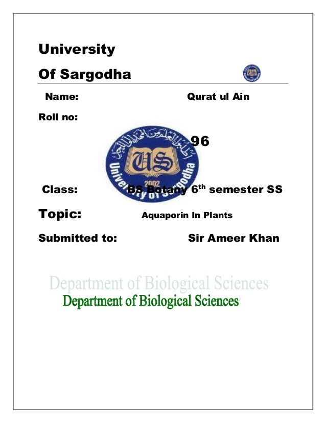 University Of Sargodha Name: Qurat ul Ain Roll no: 96 Class: BS Botany 6th semester SS Topic: Aquaporin In Plants Submitte...