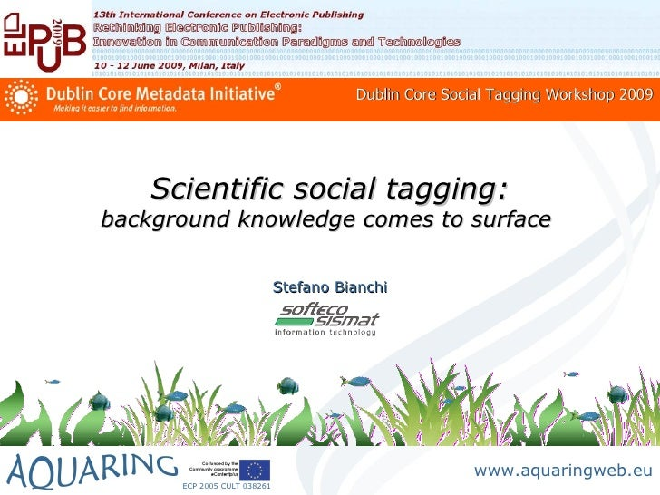 Dublin Core Social Tagging Workshop 2009         Scientific social tagging: background knowledge comes to surface         ...