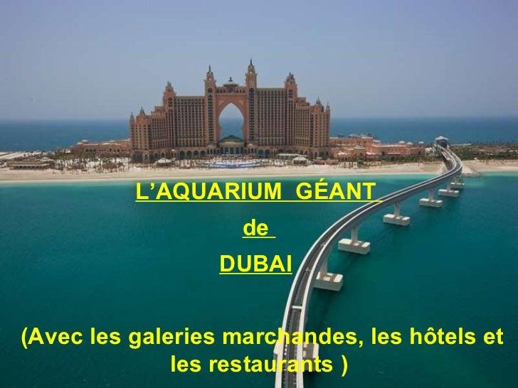 L'AQUARIUM  G ÉANT  de  DUBAI   (Avec les galeries marchandes, les hôtels et les restaurants )
