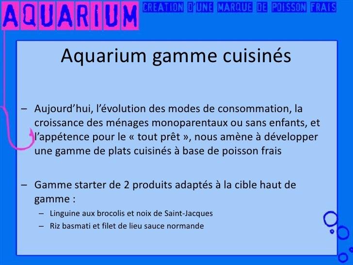 Aquarium cr ation de marque for Acoiriome de poisson