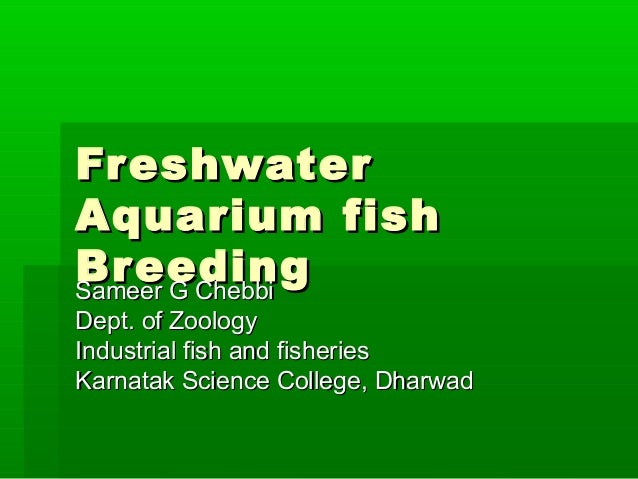 FreshwaterFreshwater Aquarium fishAquarium fish BreedingBreedingSameer G ChebbiSameer G Chebbi Dept. of ZoologyDept. of Zo...