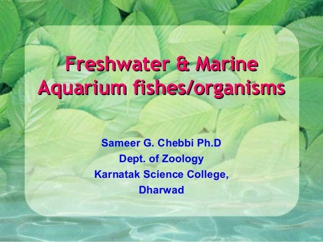 Freshwater & Marine Aquarium fishes/organisms Sameer G. Chebbi Ph.D Dept. of Zoology Karnatak Science College, Dharwad