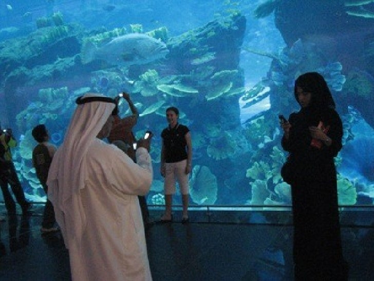 Aquarium in dubai sound and light show at night 14 next project a world map where each country gumiabroncs Images