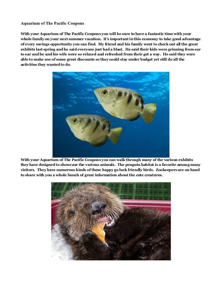 image regarding Mystic Aquarium Printable Coupons referred to as Mystic aquarium discount codes promo codes