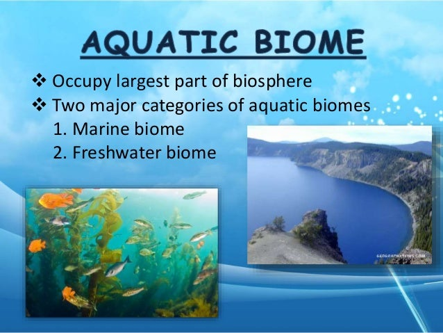 Marine Biome Natural Resources