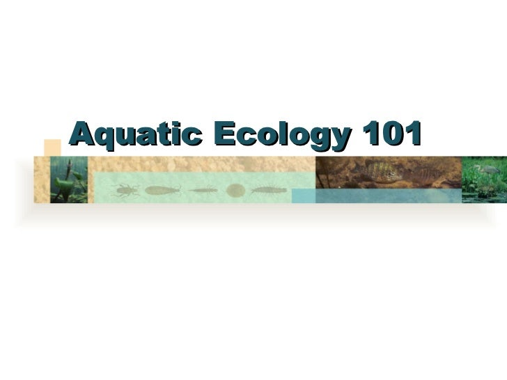 Aquatic Ecology 101