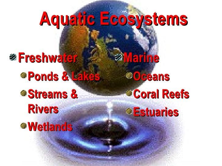Aquatic EcosystemsFreshwater       Marine Ponds & Lakes    Oceans Streams &        Coral Reefs Rivers           Estuaries ...
