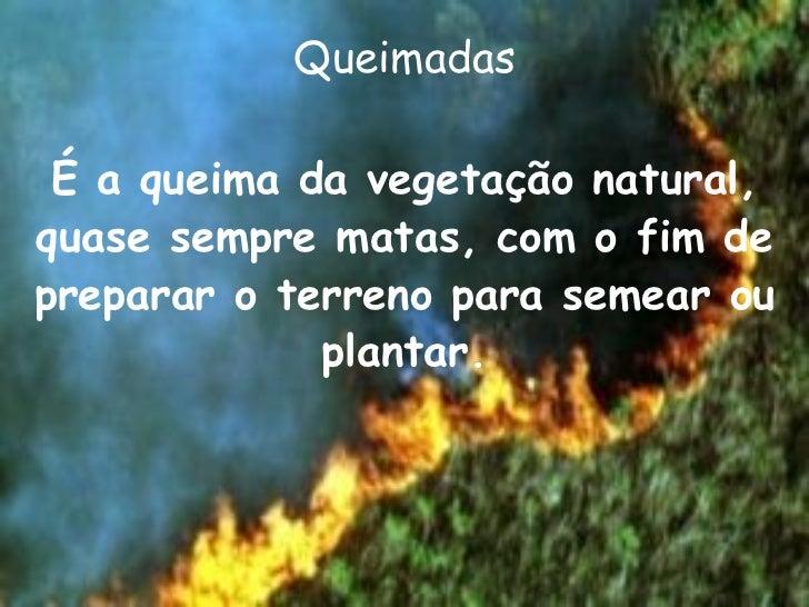 Queimadas <ul><li>É a queima da vegetação natural, quase sempre matas, com o fim de preparar o terreno para semear ou plan...