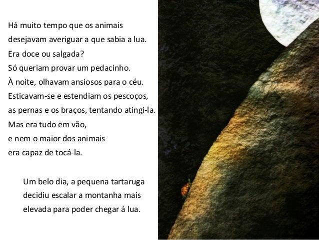 Vista lá de cima,a lua estava mais próxima,mas a tartaruga ainda não podia tocá-la.Então chamou o elefante.